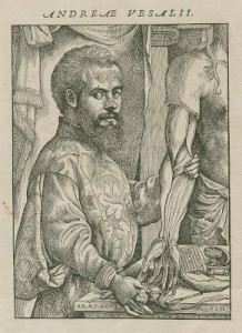Vesalius Trust Art and Anatomy Tour to Southern Greece in August/September 2014