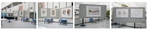 Expositie in Academisch Ziekenhuis Maastricht (AZM)