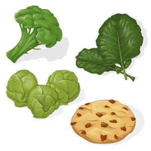botanical illustration, scientific illustration, natural science, plant, food, food illustration, cookie, broccoli, brussel sprouts