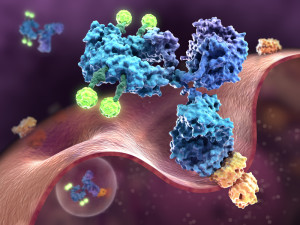XVIVO's Medical Animations Showcased at ASCO 2014