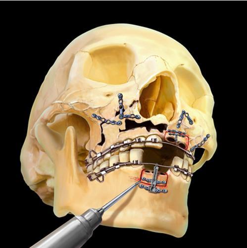 Jennifer McCormick Mind Body Medical Art