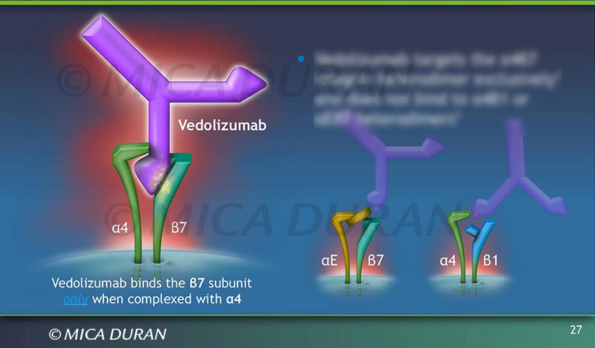 Vedolizumab
