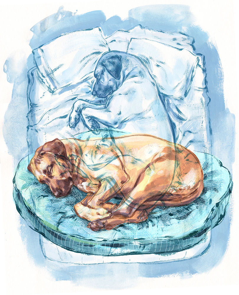 Natalya Zahn Sleeping Positions