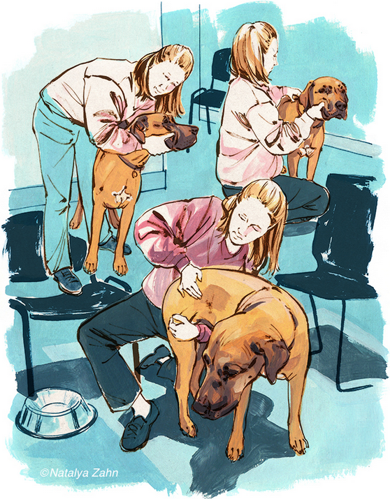 Canine Chiropractic visit