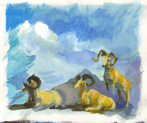 AMNH diorama studies 20141211