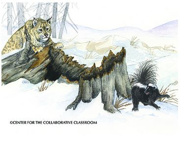 Bobcat-Skunk, Gail Guth, Center For The Collaborative Classroom