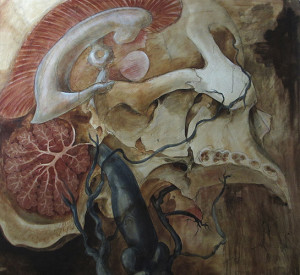The Blood and Guts of medical Illustration