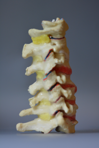 Chiropractic Patient Education Tools a Wise Investment