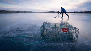Salt Spray & Pond Hockey