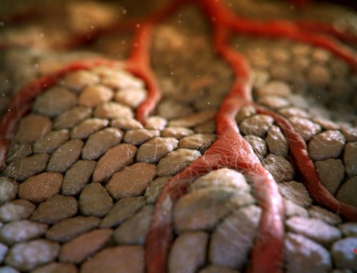 MadMicrobe Studios' Incredible Medical Animations