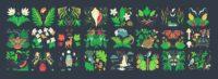 Connecticut Audubon Biodiversity Mural