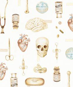 Emma Cheng - Medicine Illustration