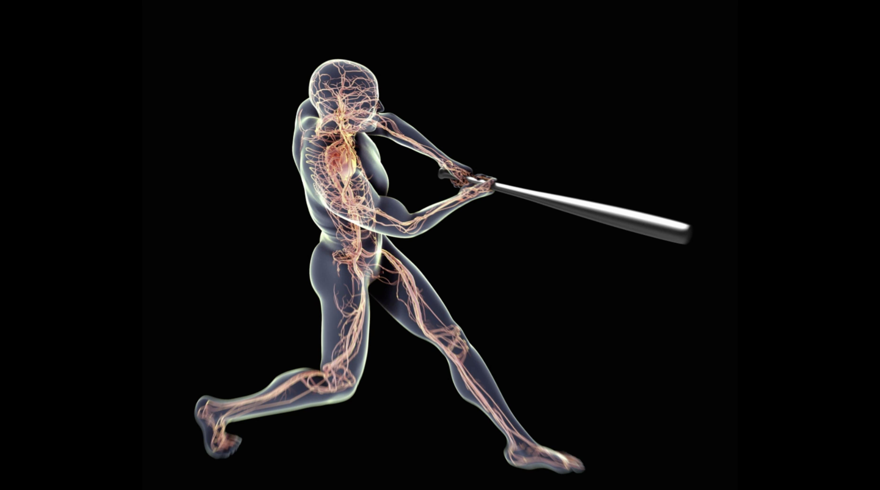 Medical Animation Spotlight