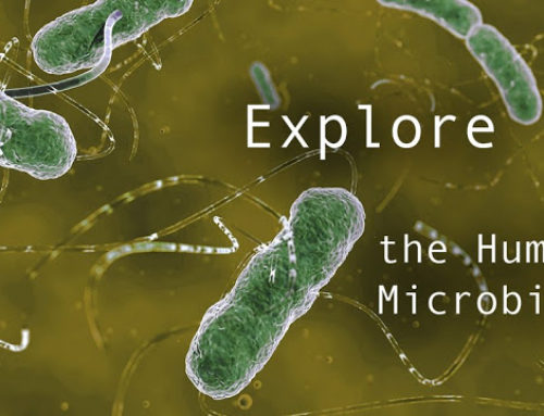 Explore the Human Microbiome