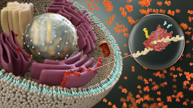 Nanobot Medical Animation Studio - Cell Final Illustration