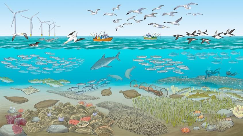 Hendrik Gheerardyn - impression of a future North Sea