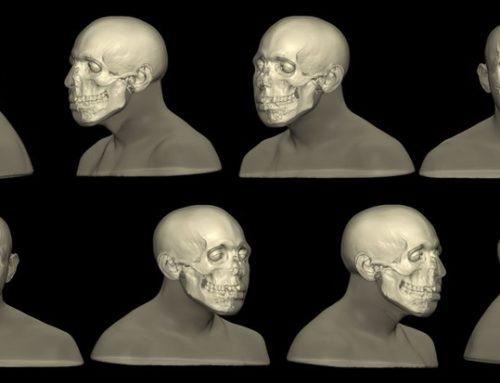 Craniofacial Reconstruction by Alexandra Gutowski