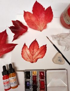 leaf, autumn, coolour, watercolour,