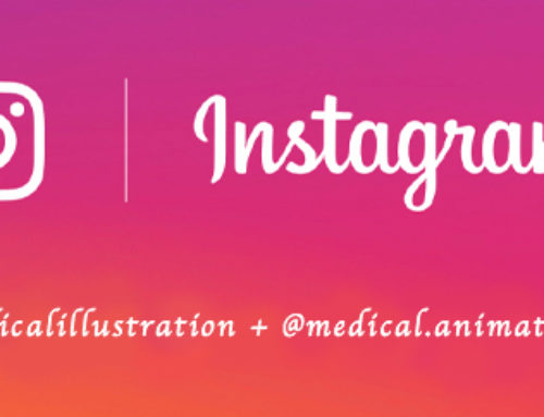Medical Illustration & Animation on Instagram