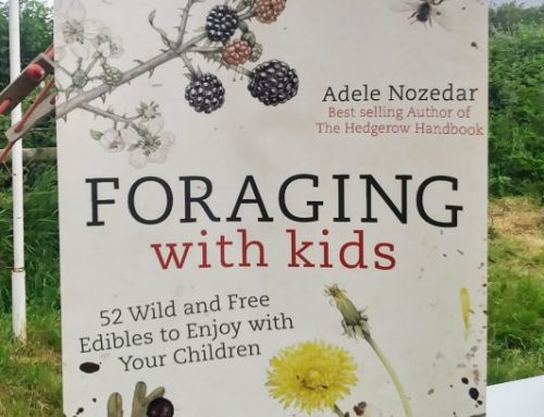 Foraging with Kids at Hay Festival