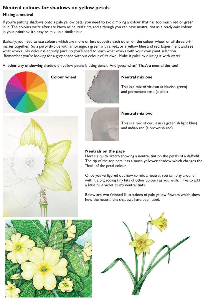 Handout of neutral tints