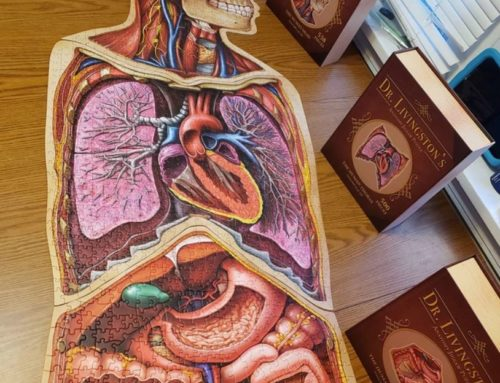 Mesa Studios Designs Anatomy Jigsaw Puzzle with Genius Games