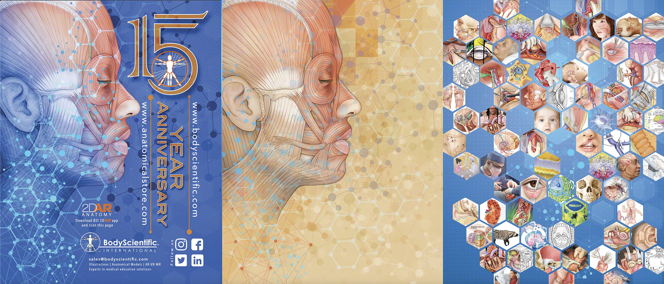 Animated cover illustration of body scientific's 15 year anniversary